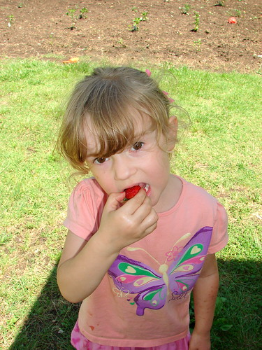 Eating first strawberry