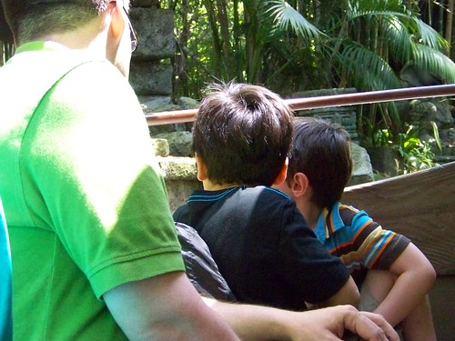 Jungle Cruise 6/20/11