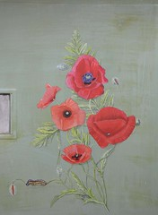 poppies (janet.baudevin) Tags: poppy poppies coquelicots pavots