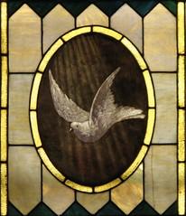 Dove Panel Detail (OpalMirror) Tags: wedding church glass oregon james catholic spirit dove ivy stainedglass stained eugene holy catholicchurch stmarys holyspirit