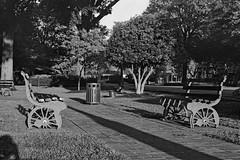 Collierville Tennessee (bhophotos) Tags: blackandwhite bw usa film geotagged shadows tn kodak tennessee f epson tmax400 townsquare collierville midsouth v700 bricksidewalk 50mmf14s nikkorsauto tmaxnikon bwfp bruceoakley