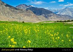 DSC_1570 copy (ragiks) Tags: travel india leh himalayas ladakh select nationalgeographic