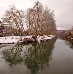 Neckarinsel (droplingur) Tags: reflection river germany neckar tbingen 2013 neckarinsel