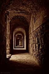 Remembering old times... (VIII) - Italica (Artigazo ) Tags: espaa sepia canon interestingness sevilla spain espanha galeria tunnel seville andalucia explore andalusia tunel espagne sville sepiatone spanien spagna andalousie gladiator iberia virado italica sevilha  siviglia romanamp