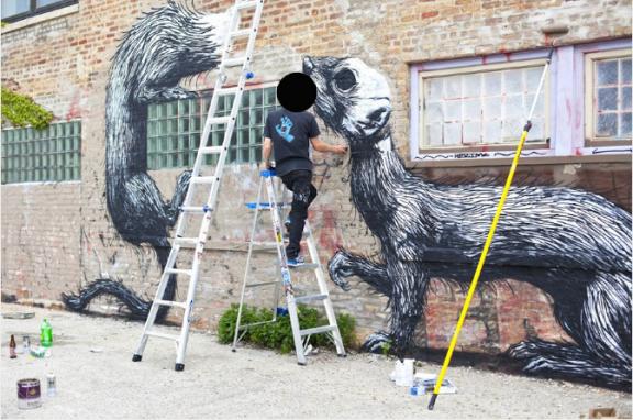 ROA-ferrets-2-576x382