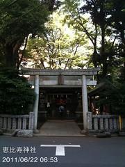 朝散歩:恵比寿神社