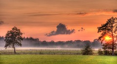 Sunset in Dutch Landscape (genf) Tags: trees sunset orange mist holland dutch clouds fence landscape evening zonsondergang bomen mood sony nederland meadow wolken hdr weiland oranje landschap hek nwn tmt stemming a700 hdr3 avondmist