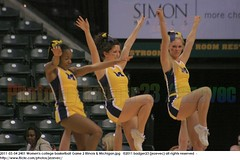 2011-03-04 2401 Women's college basketball Game 2 Illinois & Michigan