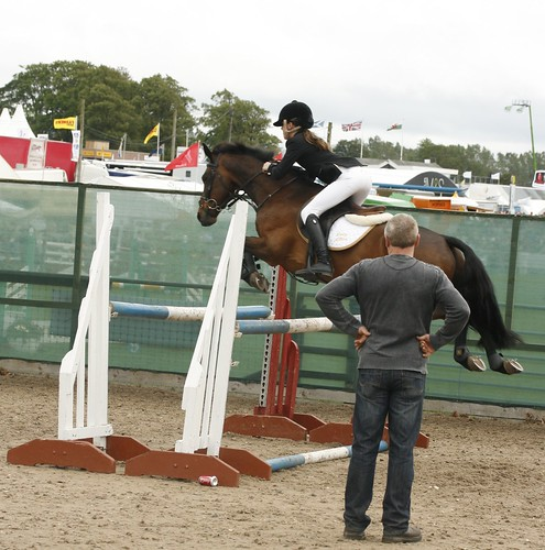 Showjumping (Warmup)