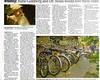 Bee article, part 2 (whymcycle) Tags: bike bicycle recycled rad bikes bici trike bicyclette tallbike daviscalifornia quadracycle whymcycle