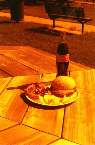 Redscale picnic
