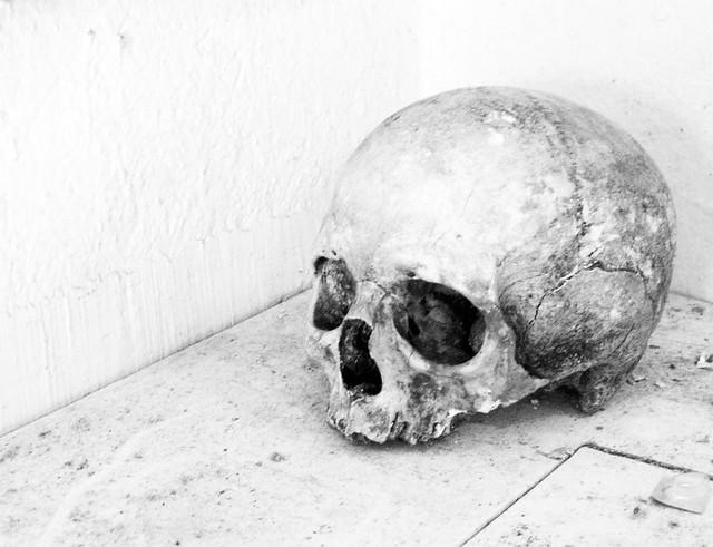 catacombsskull