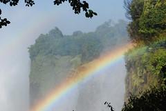 Victoria Falls_2012 05 24_1700 (HBarrison) Tags: africa hbarrison harveybarrison tauck victoriafalls zimbabwe zambeziriver mosioatunya
