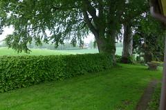 P1010259 (brandsvig) Tags: tree rain garden landscape skne sweden farm may sverige regn trd 2014 lx7 billinge rosenhill lumixlx7 aspakull