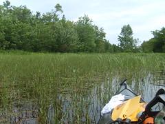 S5002648 (ndeeelite) Tags: evan ontario kayaking keri 2009 frenchriver