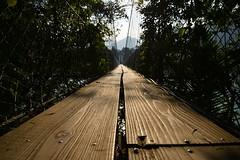 沈育民-盡頭 (lildude561494) Tags: 風景 橋