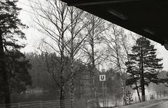 Train station (Trixi Skywalker) Tags: black white canon av1 kodak tmax400 trix 400 stockholm sweden sverige 50mm 18 nature plant flower forest grass tree camera analog analogue train station