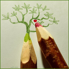des branches pour dessiner un arbre  / using a branch to draw a tree ! (www.nathalie-chatelain-images.ch) Tags: macromondays ppep crayons pencils feuilledepapier sheetofpaper couleurs colors rouge red vert green dessin drawing arbre tree pomme apple macro nikon