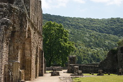 Tintern Abbey View (Siobhan S) Tags: trees sky abbey forest ruins tinternabbey