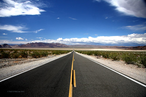 Desert road picture