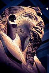 British Museum 1 (Phil Steere) Tags: london history june museum nikon phil egypt britishmuseum museums naturalhistorymuseum 2011 steere d3100 nikond3100 philsteere