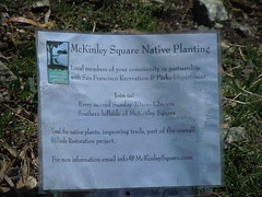Plant restoration McKinley Square San Francisco 2011 (pchurch92) Tags: sanfrancisco flowers northerncalifornia potrero potrerohill mckinleysquare plantrestoration