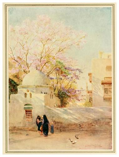 012-El arbol de Jacaranda-An artist in Egypt (1912)-Walter Tyndale