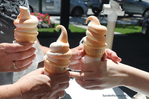 PAM_4762-Meadowlark-Dairy-Pleasanton-ice-cream-cones