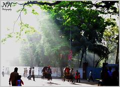 The New Sun brings 1419 & Happiness (Nazmul Hossain [ON/OFF]) Tags: life new color nikon university year culture celebration program dhaka 2012 rythm bengali pohela 1419 boishakh nazmul romna charukola   botomul d3100 hossian nazmulbd 01717552939
