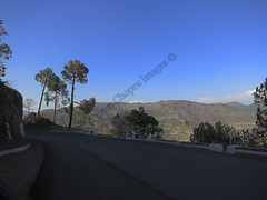 IMG_0706 Shimla Road (Tarun Chopra) Tags: road landscape shimla valley gurgaon s100 canonpowershots100