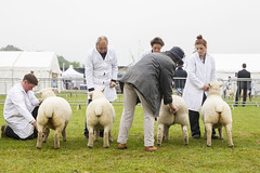 Kent_County_Show_2014_025