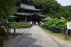 (GenJapan1986) Tags: japan temple kyoto  25mm 2014    nikond600 zf2 distagont225