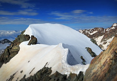 (! HoliShoes _____________) Tags: mountain alps neve summit cassandra alpinismo alpi montagna pizzo cime cresta vetta disgrazia cordata ghicciaio chiareggio valmalenco pizzocassandra gerliporro