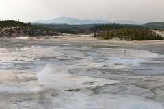 yellowstone - norris geyser basin - usa - 13 (hors-saison) Tags: park usa basin national yellowstone wyoming geyser norris unis tats