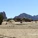 Tigray landscape with donkeys
