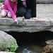 hidden_garden_20110508_16214