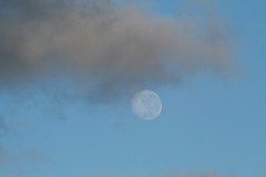 Clouds passing by the moon (Zelda Wynn) Tags: sky moon weather auckland lunar cloudscape troposphere waning zeldawynnphotography