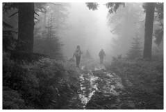 Beskidy 12 (Spartaxus) Tags: mountains fog analog kodak tmax silesia beskidy