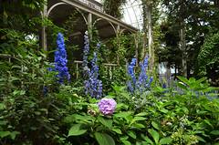 NYBG_133 (chiang_benjamin) Tags: nybg newyorkbotanicalgarden ny nyc bronx newyorkcity flowers trees arboretum plants green nature summer monetexhibit impressionism house