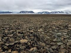 Icy tundra in Svalbard (danielfoster437) Tags: arktis eis kälte wintereis arctic coldweather dewinter ice koude noordpool svalbard winter wintercold winterijs