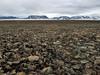 Icy tundra in Svalbard (danielfoster437) Tags: arktis eis kälte wintereis arctic coldweather dewinter ice koude noordpool svalbard winter wintercold winterijs 北極点 岩場 真冬 凍える