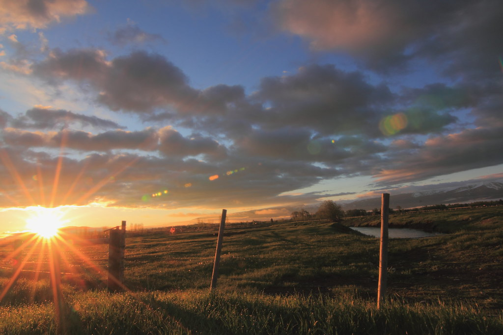 IMAGE: http://farm6.static.flickr.com/5038/5870276002_d8675f3681_b.jpg