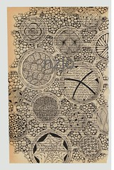 Grays Anatomy-transverse section of the nerve (Jo in NZ) Tags: illustrated anatomy zentangle nzjo