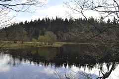 Loch Ard (John_A_Irwin*) Tags: nikon trossachs lochard d3100