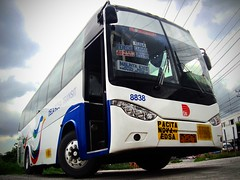 Dela Rosa Transit - 8838 (Blackrose0071) Tags: camera bus bar self golden dragon phil diesel royal rosa automotive motors corporation replica transit owned daewoo trans midi corp society dela turbocharged bataan philippine blackrose enthusiasts delarosa 8838 straight6 daewoobus bm090 philbes remanufacturing de08tis xml6103