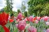 Claude Monet's Flower Garden  ~ Giverny ~ MjYj (MjYj ~ IamJ) Tags: paris pond waterlily claude eden impressionist giverny monnet nymphéas dsc02368 mjyj mjyj©