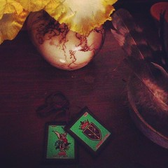 scapular iris (LauraSorrells) Tags: iris stilllife ceramic catholic feather pottery christianity scapular threeyearsagoifyouwouldhavesaidiwouldownascapulariwouldhavesaidyouwerenuts