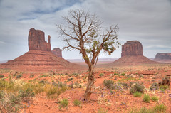 Monument Valley - From the Wildcat Trail [Explore] (zendt66) Tags: travel vacation arizona usa southwest monument utah nikon desert scenic american valley navajo monumentvalley hdr navajotribalpark d90 photomatix zendt66