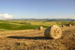 golden Tuscany (xfoTOkex) Tags: italien blue shadow sky italy brown white green yellow clouds landscape nikon shadows feld felder straw tuscany bales toscana stroh d800 toskana strohballen balesofstraw
