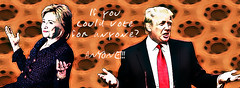 Clinton Trump - If you could vote for anyone (muffinn) Tags: trump clinton anyone